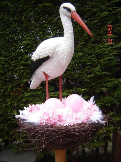 boondesigns geboorte-aankondigingen ooievaar op nest staand meisje